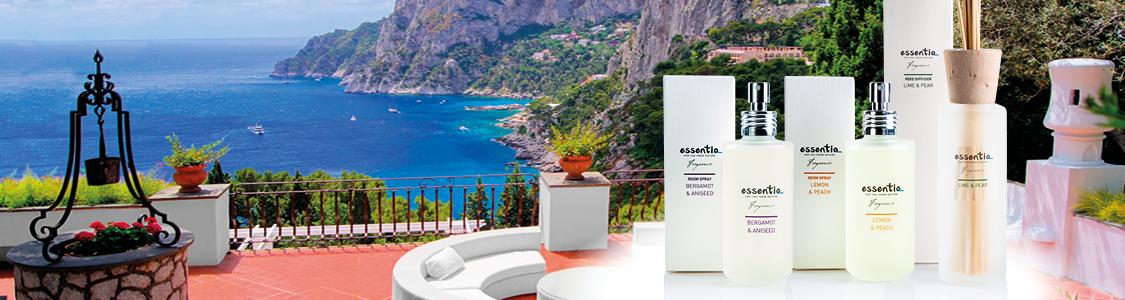 essentiq-home-fragrance-original-model.jpg